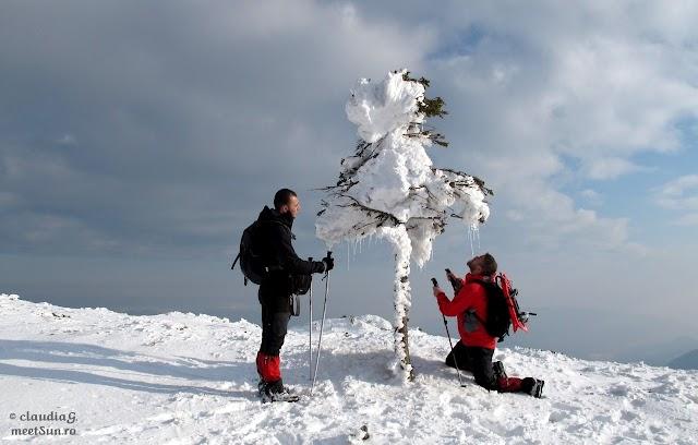 Ciucas-Bratocea-iarna_1849_rw.jpg