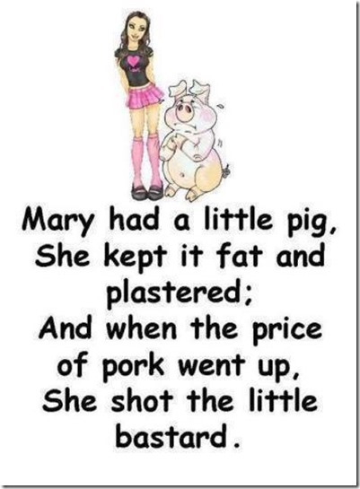mary had a little pig