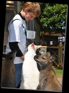 Lachlan with Wallabies DSC_0454
