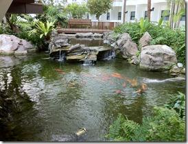 Koi Pond at Rasa Sentosa Resort Singapore