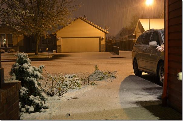Snow in Spring 003