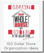 100 Dollar Store Organization Ideas