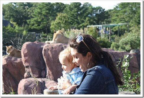 Zoo 032