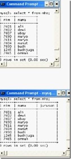 Operasi dasar Database phpMyAdmin