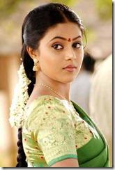 Actress-shamna_kasim_in_saree_cute_pic