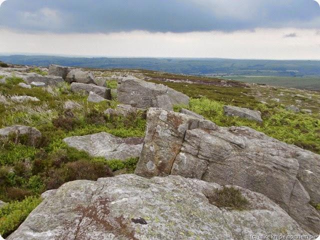 carr stones