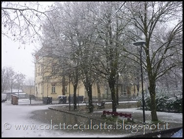 Neve a Padulle - 28 gennaio 2014(3)