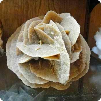 2-sand-rose