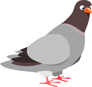 Clipart pigeon 512x512 38f8