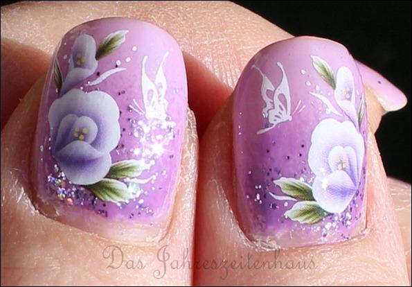 Lila Mauerblümchen 4