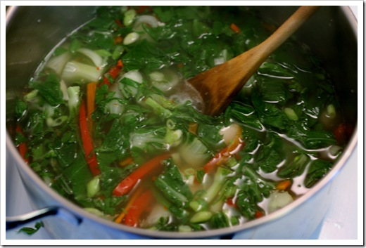 asian_chicken_soup (3)