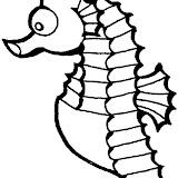 Seahorse-001.jpg