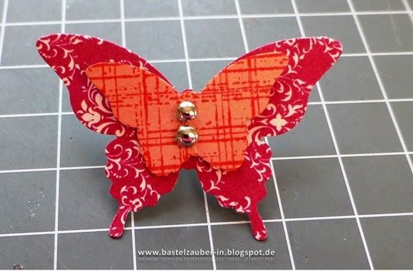 Schmetterlingsverschluß7-fertig