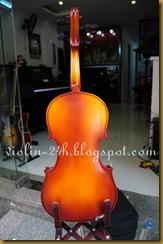 ban dan violin
