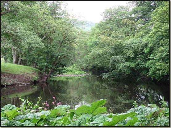 The River Derwent at Curbar