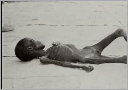 criana morta de fome na ndia
