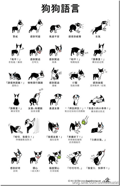 中文版-狗狗的30種身體語言(doggie language)