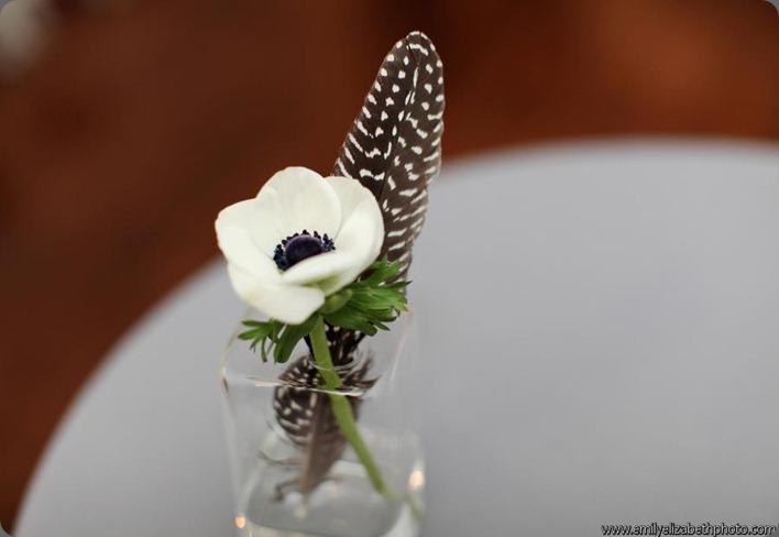 375520_301876486516245_1365669638_n  ladybird poppy floral design