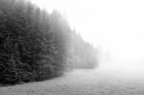 4. Efecto niebla en Photoshop