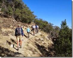 Madera Canyon Mar 19 009