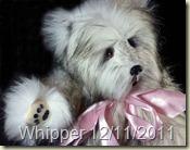 WhipperHP1000