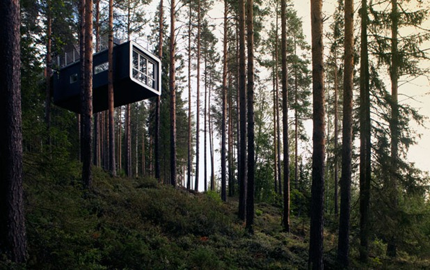 tree hotel by tham & videgard arkitekter 9