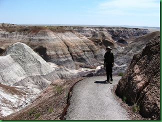 Painted Desert & Petrified Forest 169