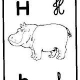 Hhipopotamo2.jpg