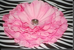 Solid Pink Peony (1)
