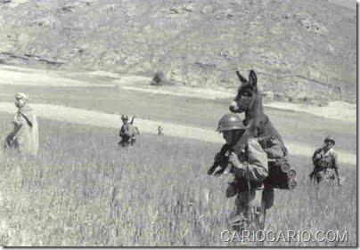 Fotos engraçadas da Segunda Guerra Mundial (4)