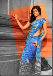 Telugu Actress Eesha in Saree Photo Shoot Stills