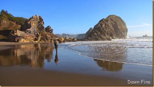 Harris Beach_131