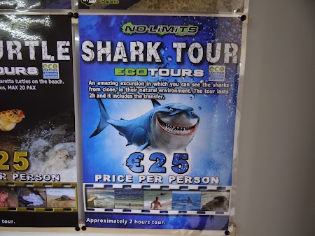 09. Shark Tour - Sal, Cape Verde.JPG