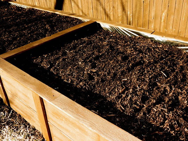 building raised garden box style with cents15