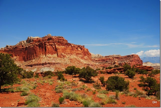 05-26-14 A West Side of Capital Reef NP (53)