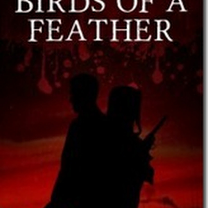 Orangeberry Book of the Day – Birds of A Feather by Kara Stefanowich