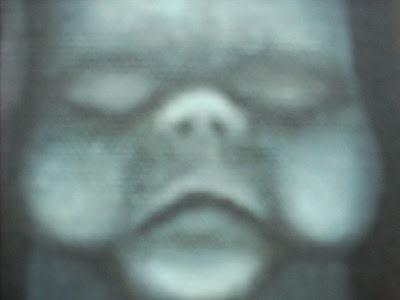DSCN3894