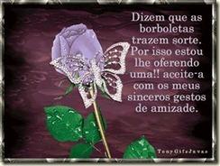 borboletas57
