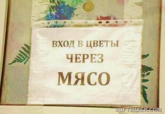 f66968e3de8e9a26e5be5e93efa_prev