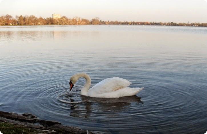 Damhussøen en påskelørdag