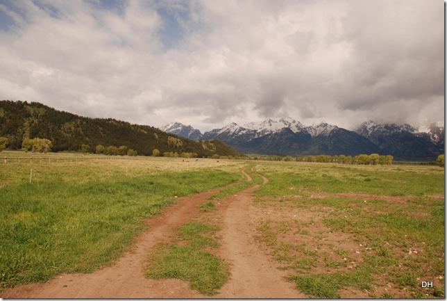 06-04-13 A Teton NP - Mormon Row Area (7)
