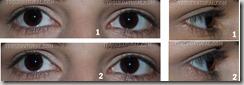 Rímel - Mascara para olhos 2 em 1 efeito cílios postiços Flamingo1