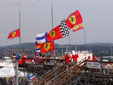 22. Steaguri Ferrari.JPG