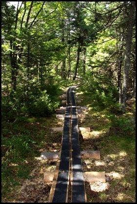 Campobello  3 SW trail loop 130