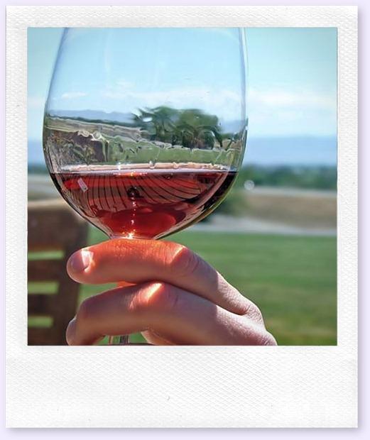 segurar-taça-vinhos-vinhoedelicias