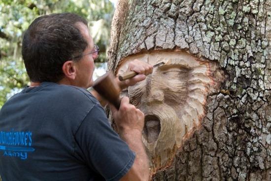 espírito árvore 08