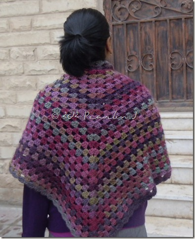 shawl 012