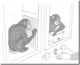 chimp-help