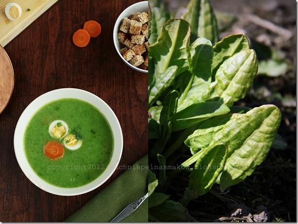 zupa szczawiowa4
