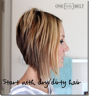 Start with dry, dirty hair